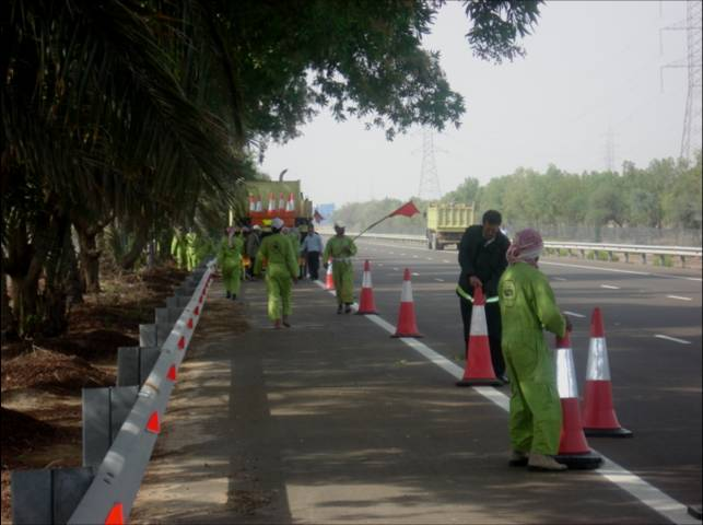 Operation and Maintenance for Forest and Landscaped Areas in